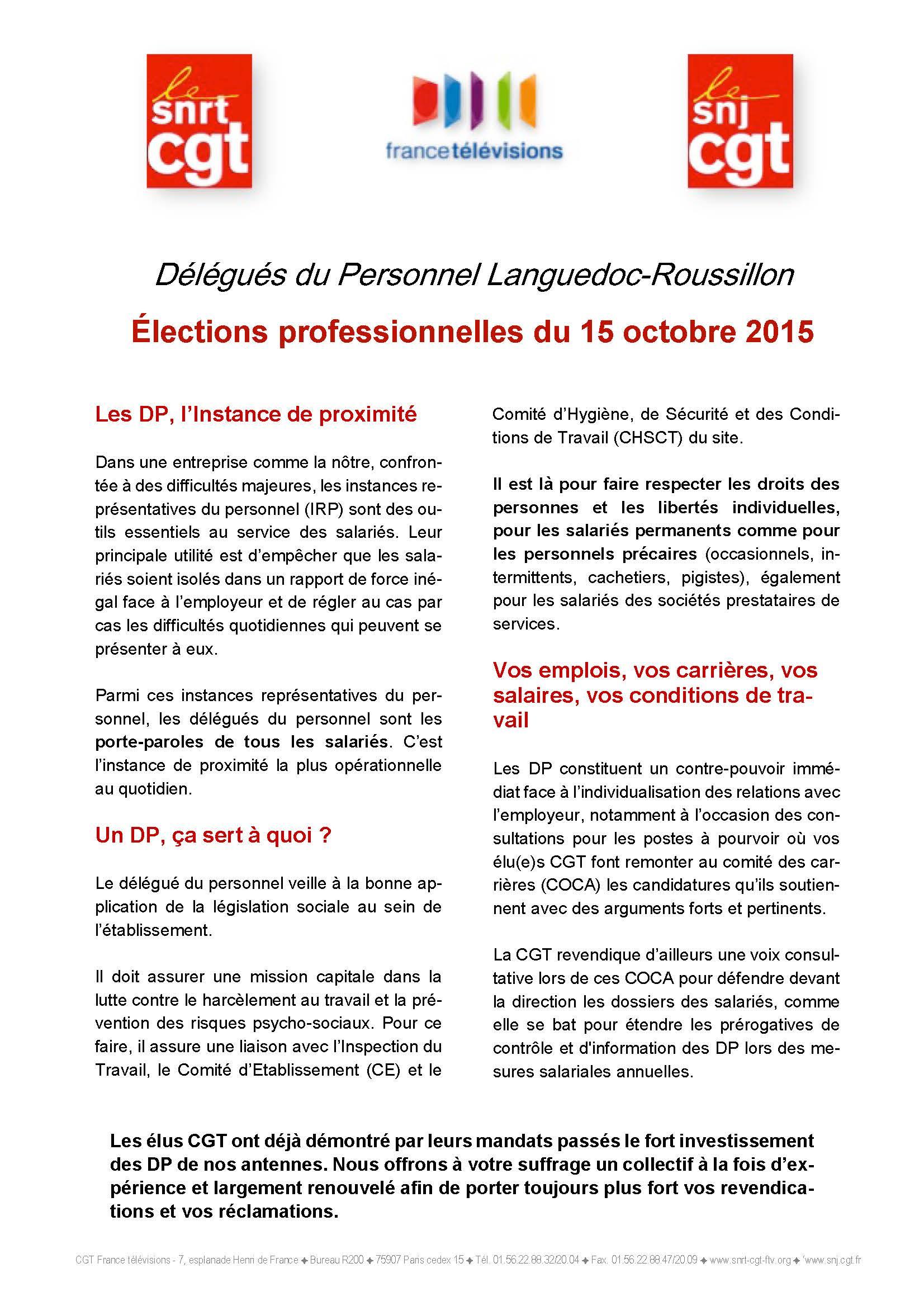 Elections Professionnelles Profession De Foi Dp Languedoc